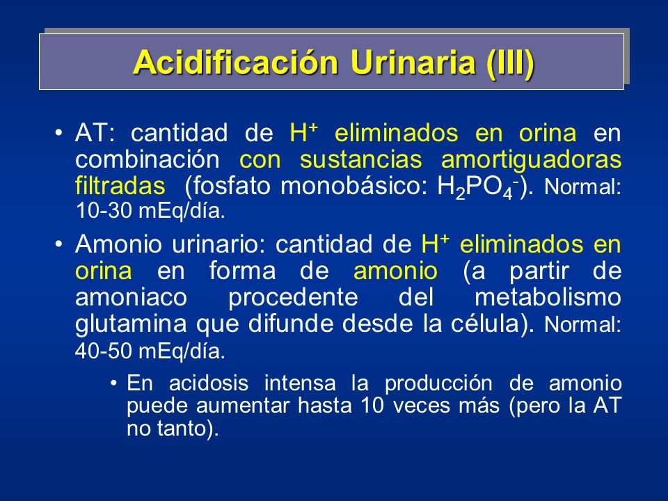 Acidificación Urinaria (III)