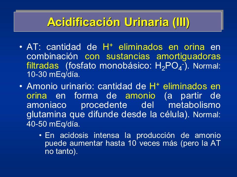 Acidificación Urinaria (III)