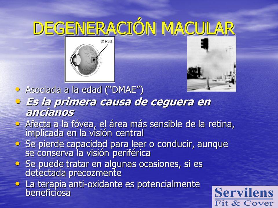 DEGENERACIÓN MACULAR Es la primera causa de ceguera en ancianos