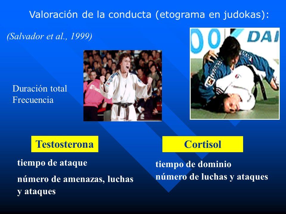 Testosterona Cortisol