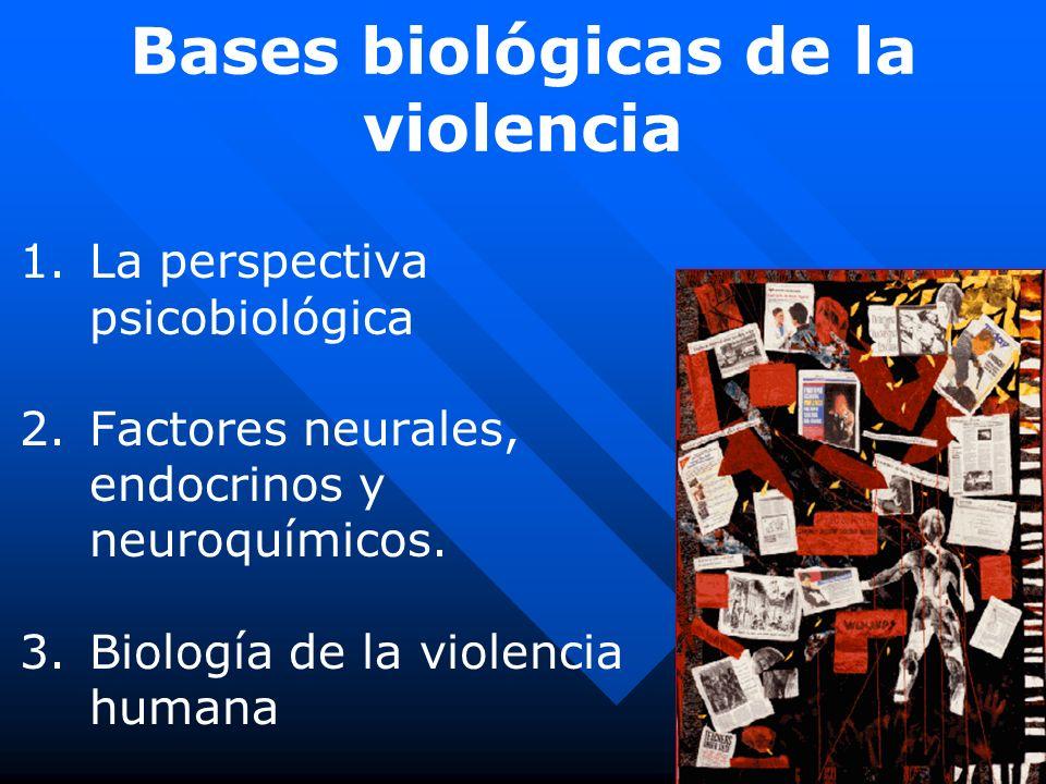 Bases biológicas de la violencia