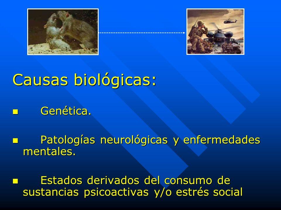 Causas biológicas: Genética.