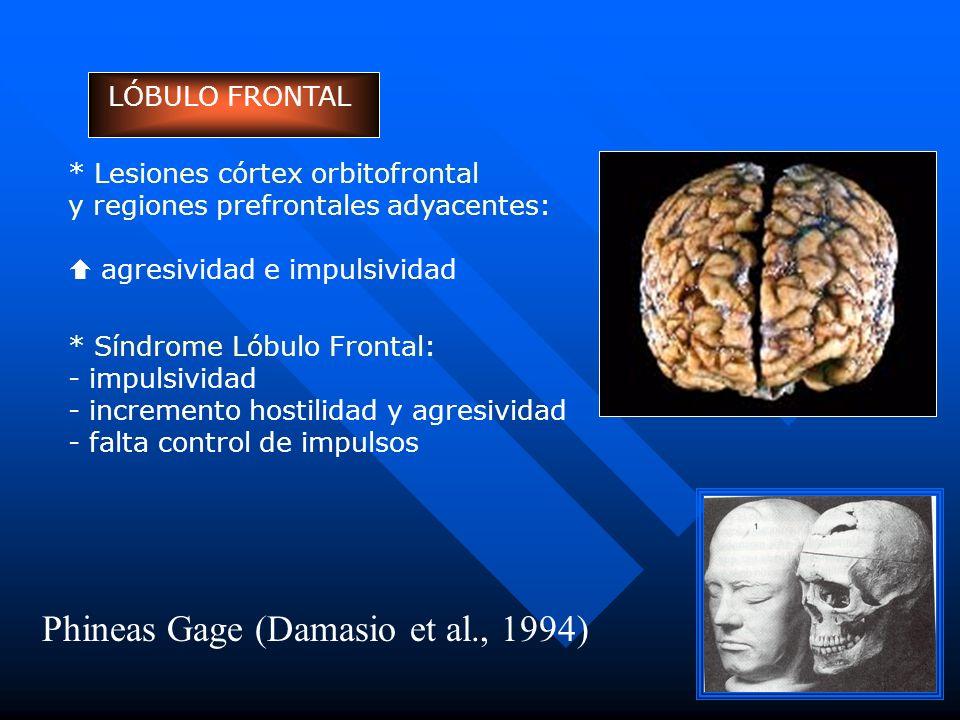 Phineas Gage (Damasio et al., 1994)