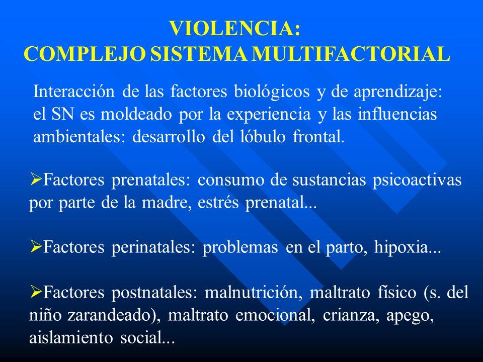 COMPLEJO SISTEMA MULTIFACTORIAL