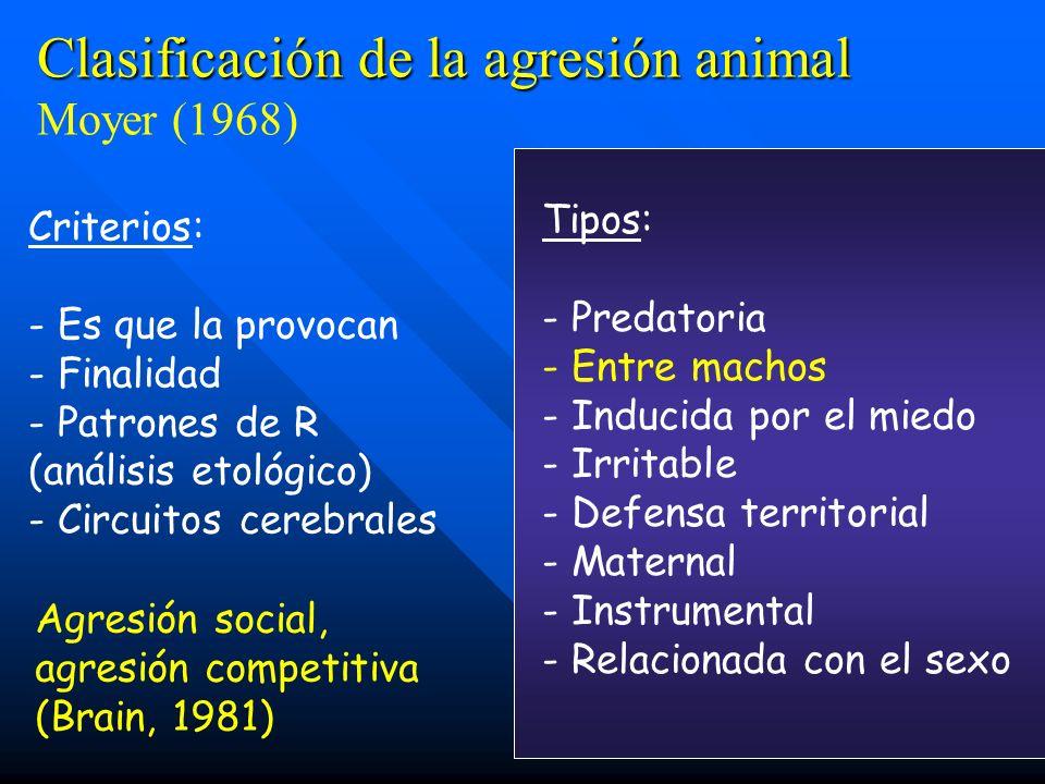 Clasificación de la agresión animal Moyer (1968)