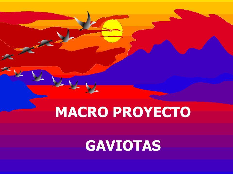 MACRO PROYECTO GAVIOTAS