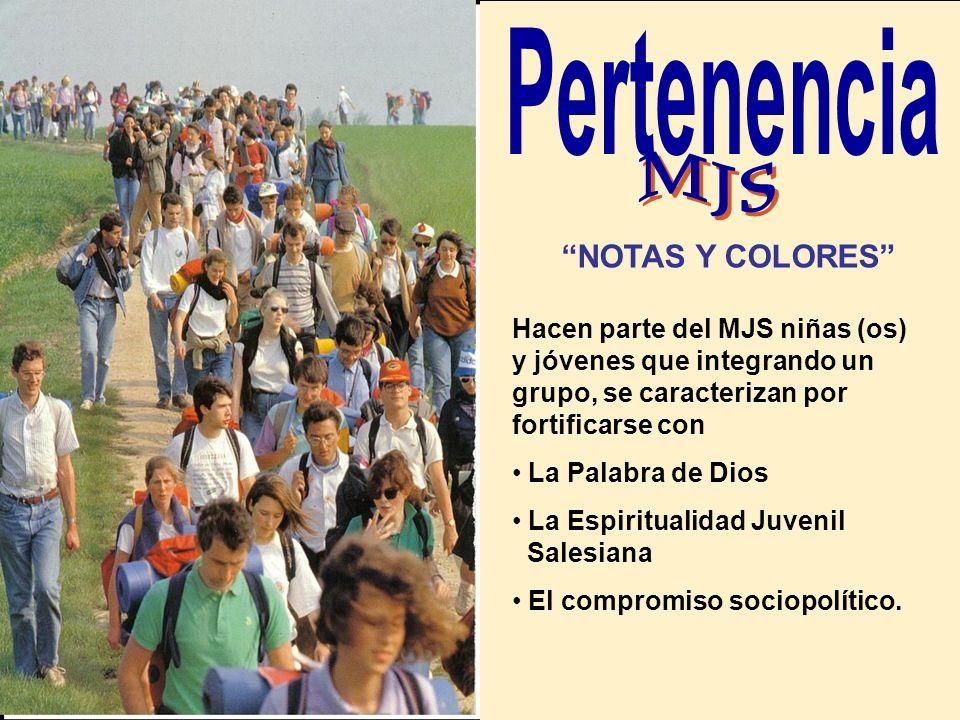 Pertenencia MJS NOTAS Y COLORES
