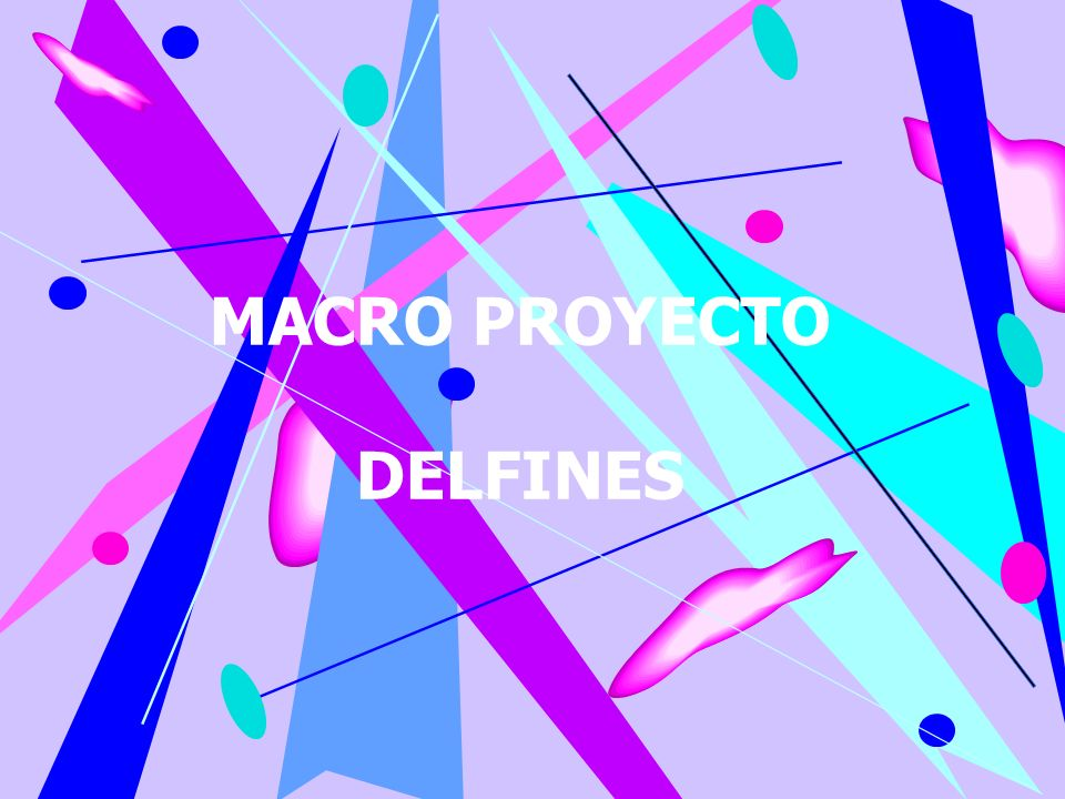 MACRO PROYECTO DELFINES