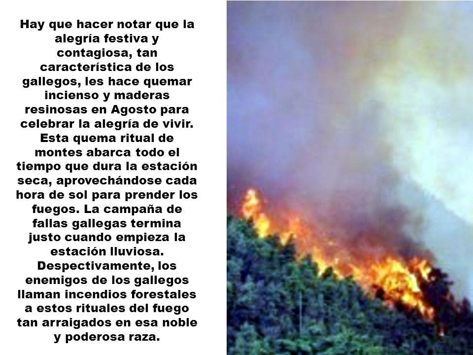 Hay que hacer notar que la alegría festiva y contagiosa, tan característica de los gallegos, les hace quemar incienso y maderas resinosas en Agosto para celebrar la alegría de vivir.