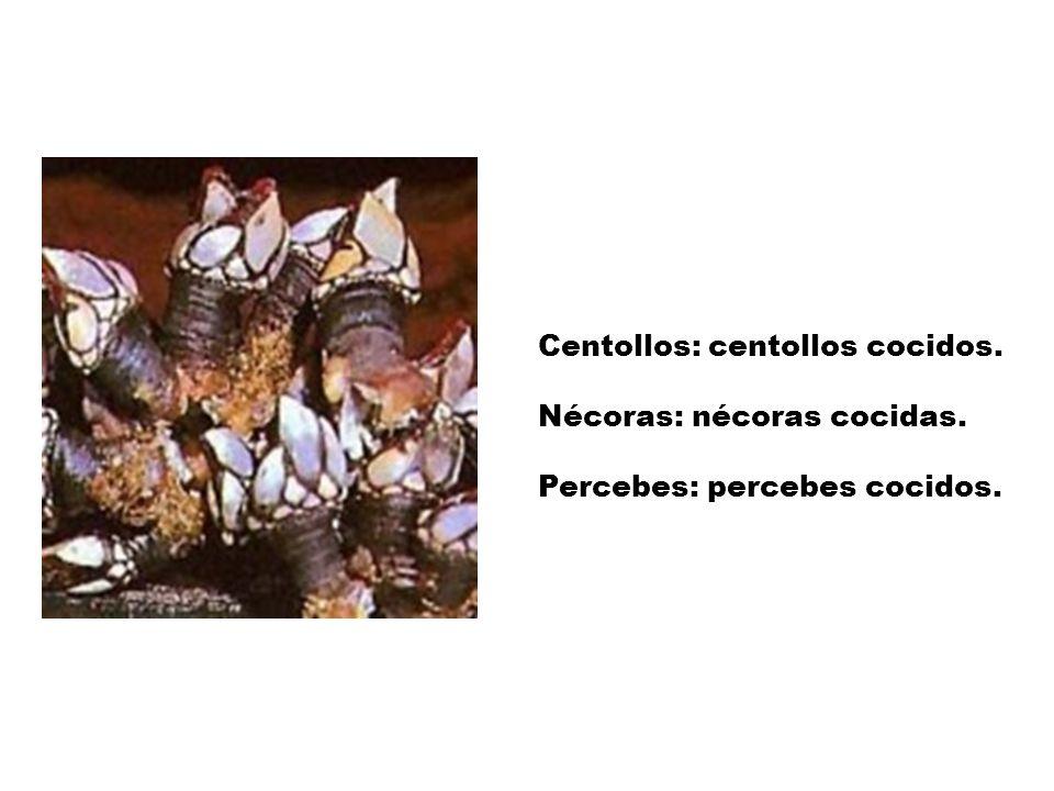 Centollos: centollos cocidos.