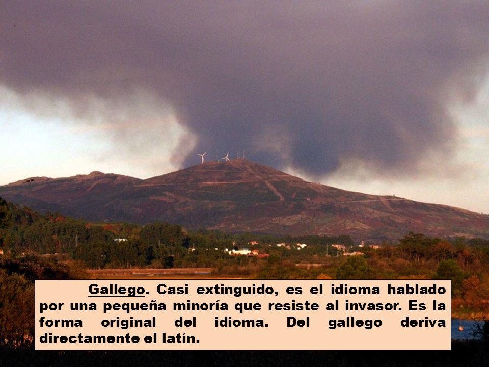 Gallego. Casi extinguido, es el idioma hablado por una pequeña minoría que resiste al invasor.