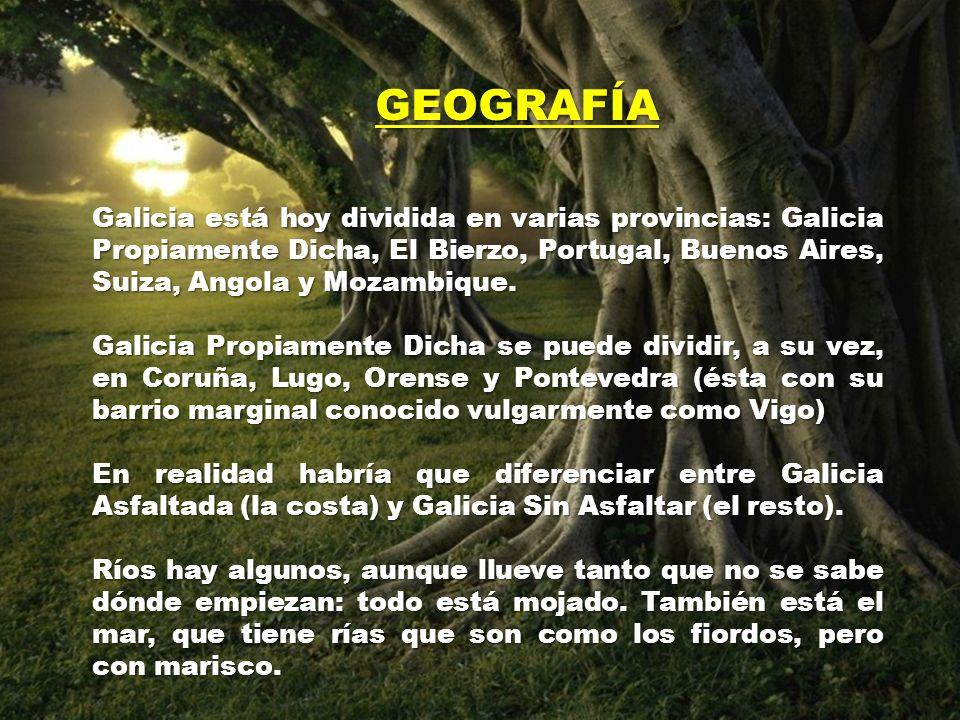GEOGRAFÍA Galicia está hoy dividida en varias provincias: Galicia Propiamente Dicha, El Bierzo, Portugal, Buenos Aires, Suiza, Angola y Mozambique.