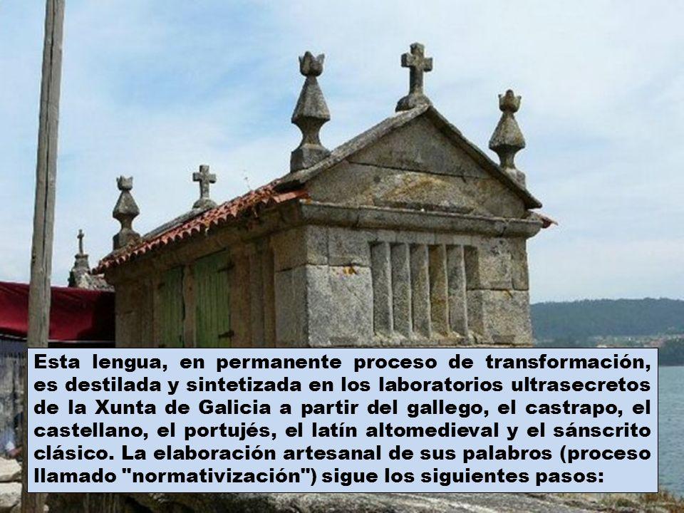Esta lengua, en permanente proceso de transformación, es destilada y sintetizada en los laboratorios ultrasecretos de la Xunta de Galicia a partir del gallego, el castrapo, el castellano, el portujés, el latín altomedieval y el sánscrito clásico.