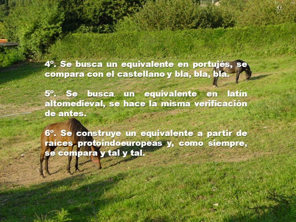 4º. Se busca un equivalente en portujés, se compara con el castellano y bla, bla, bla.