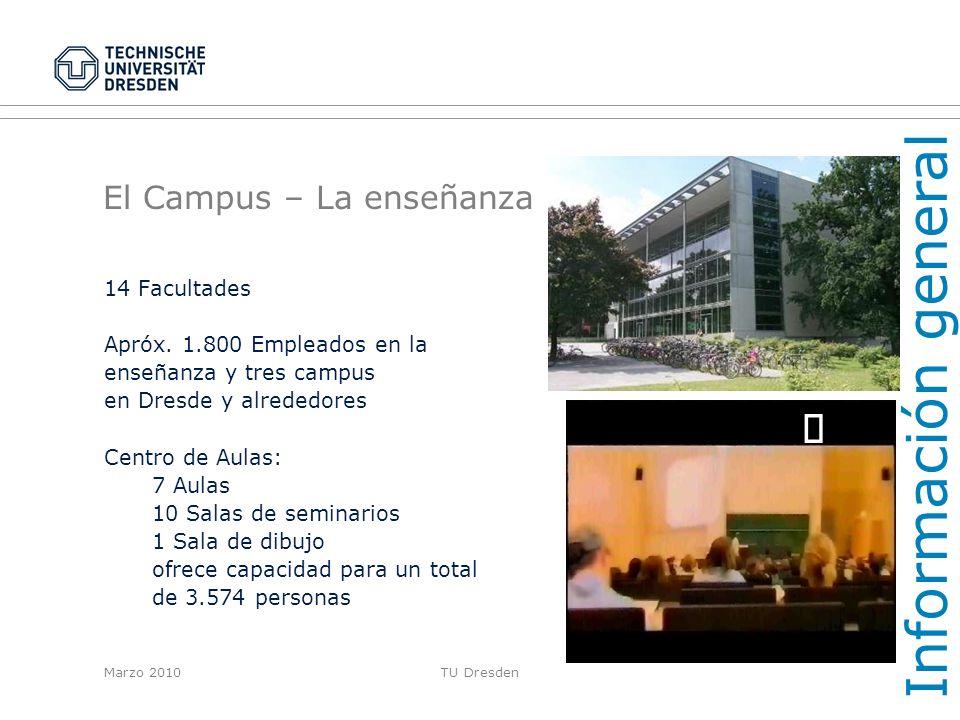 El Campus – La enseñanza