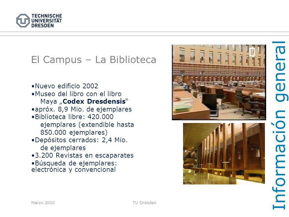 El Campus – La Biblioteca