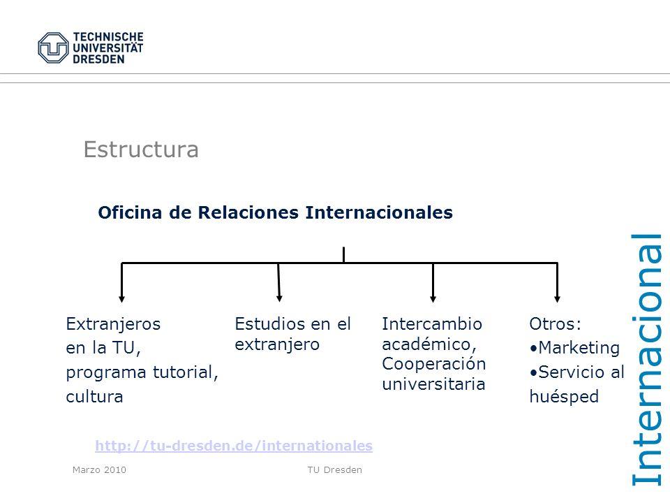 Internacional Estructura Extranjeros en la TU, programa tutorial,