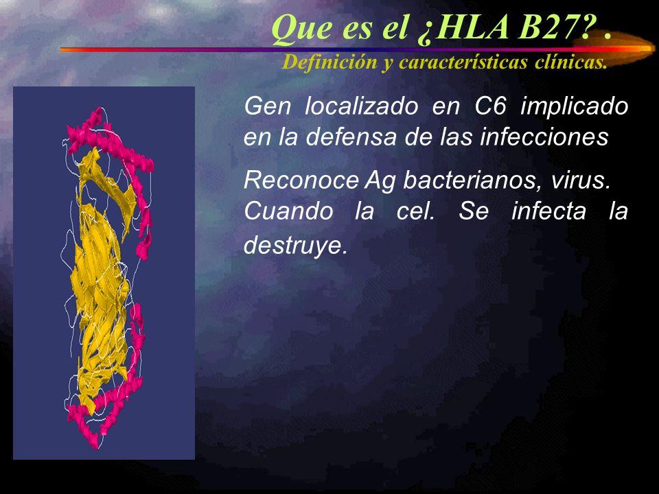Que es el ¿HLA B27 . Definición y características clínicas. Gen localizado en C6 implicado en la defensa de las infecciones.
