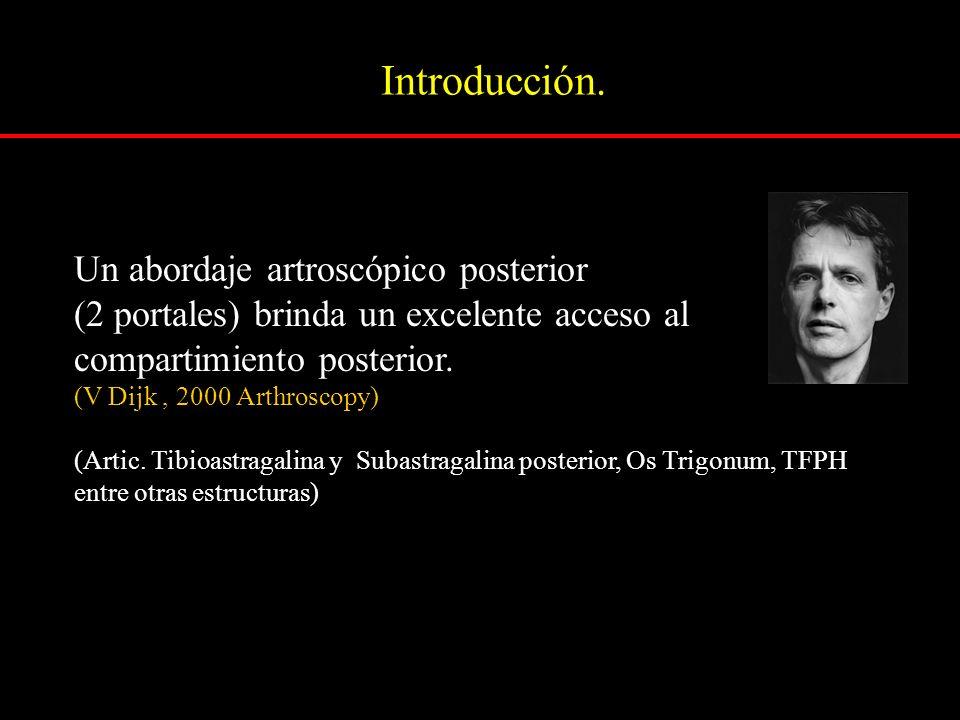 Introducción. Un abordaje artroscópico posterior