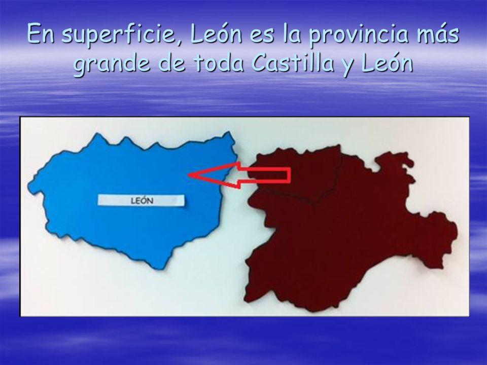 En superficie, León es la provincia más grande de toda Castilla y León