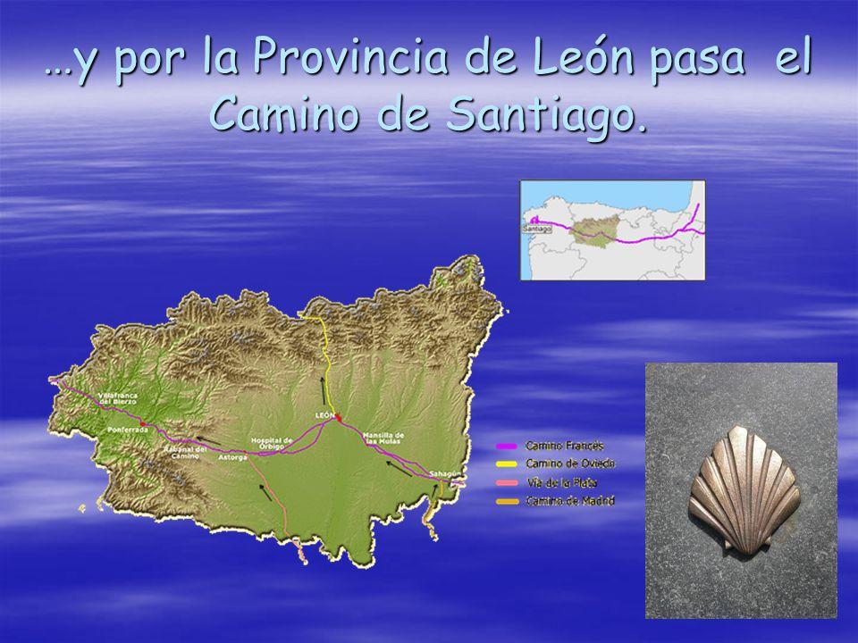 …y por la Provincia de León pasa el Camino de Santiago.