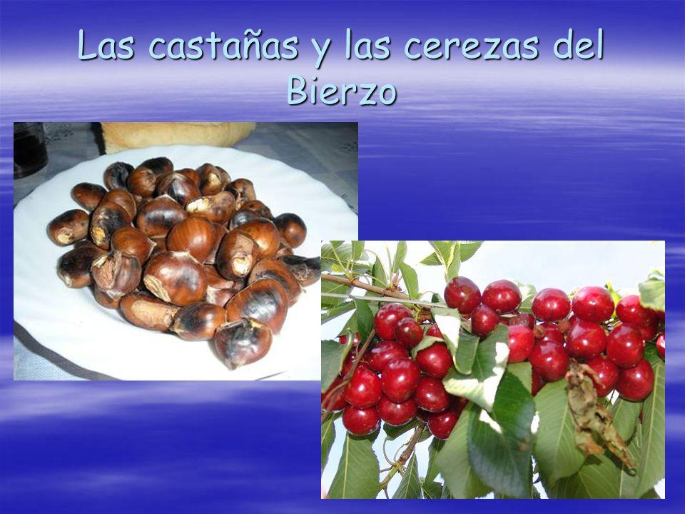 Las castañas y las cerezas del Bierzo