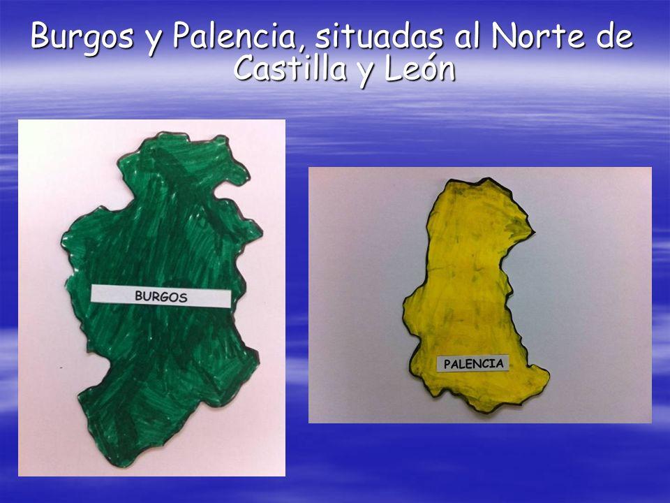 Burgos y Palencia, situadas al Norte de Castilla y León