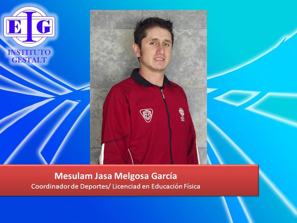 Mesulam Jasa Melgosa García