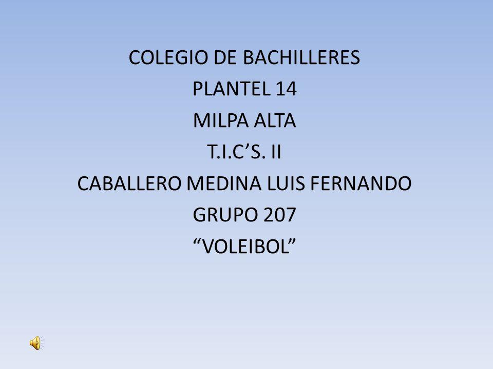 COLEGIO DE BACHILLERES PLANTEL 14 MILPA ALTA T.I.C'S. II