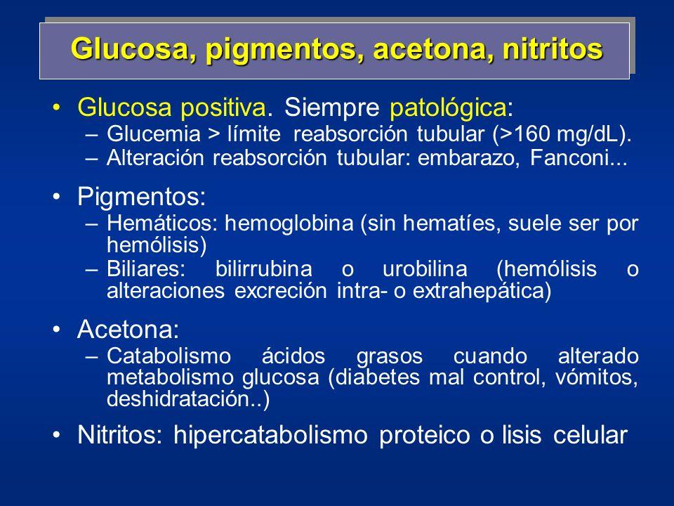 Glucosa, pigmentos, acetona, nitritos