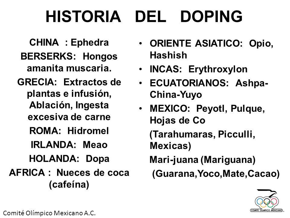 BERSERKS: Hongos amanita muscaria. AFRICA : Nueces de coca (cafeína)