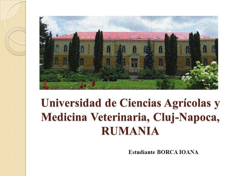 Universidad de Ciencias Agrícolas y Medicina Veterinaria, Cluj-Napoca, RUMANIA