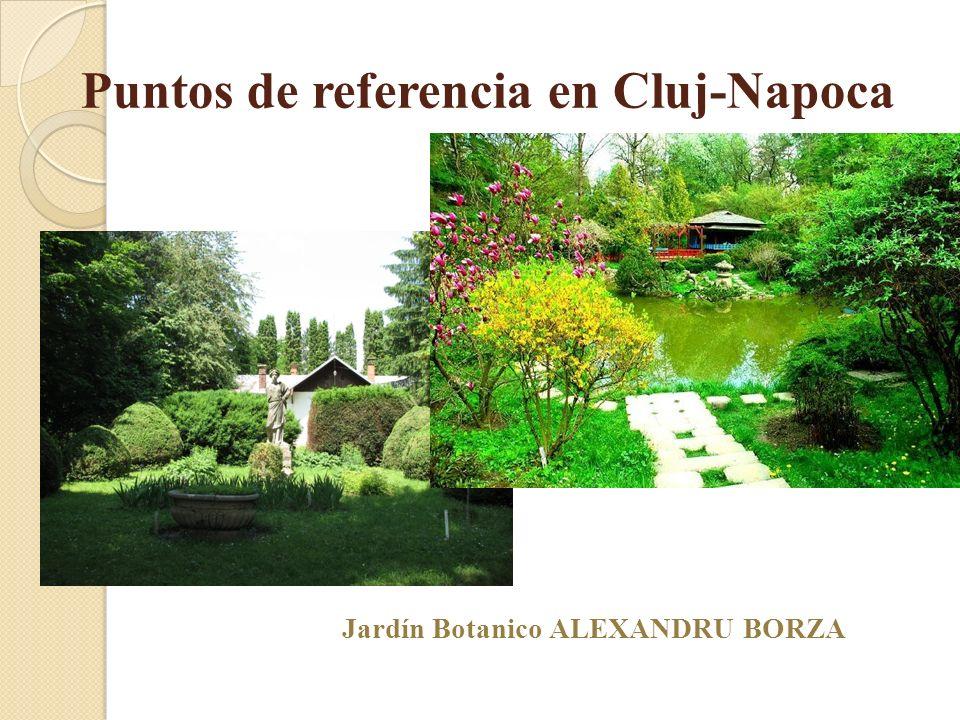 Puntos de referencia en Cluj-Napoca