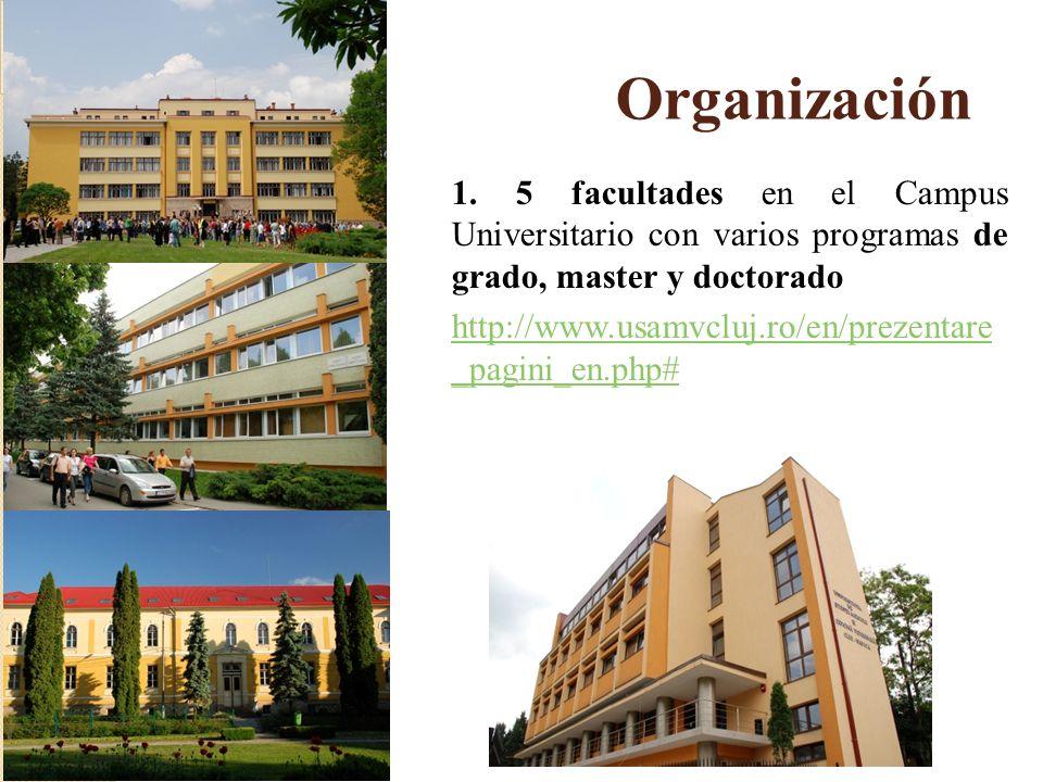 Organización 1. 5 facultades en el Campus Universitario con varios programas de grado, master y doctorado.