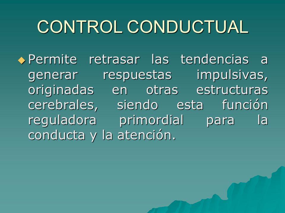 CONTROL CONDUCTUAL