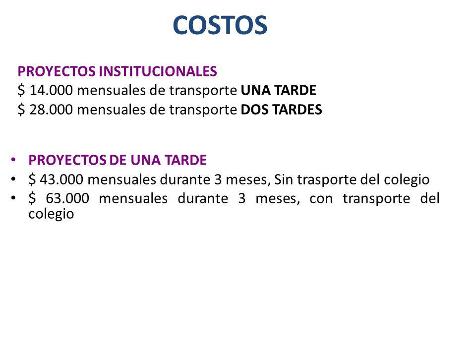 COSTOS PROYECTOS INSTITUCIONALES