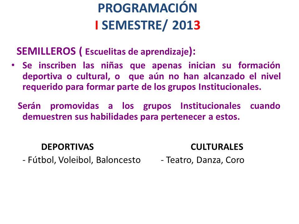 PROGRAMACIÓN I SEMESTRE/ 2013