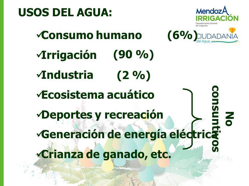 USOS DEL AGUA: Consumo humano (6%) Irrigación. Industria. Ecosistema acuático. Deportes y recreación.