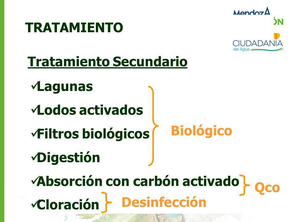 TRATAMIENTO Tratamiento Secundario. Lagunas. Lodos activados. Filtros biológicos. Digestión. Absorción con carbón activado.