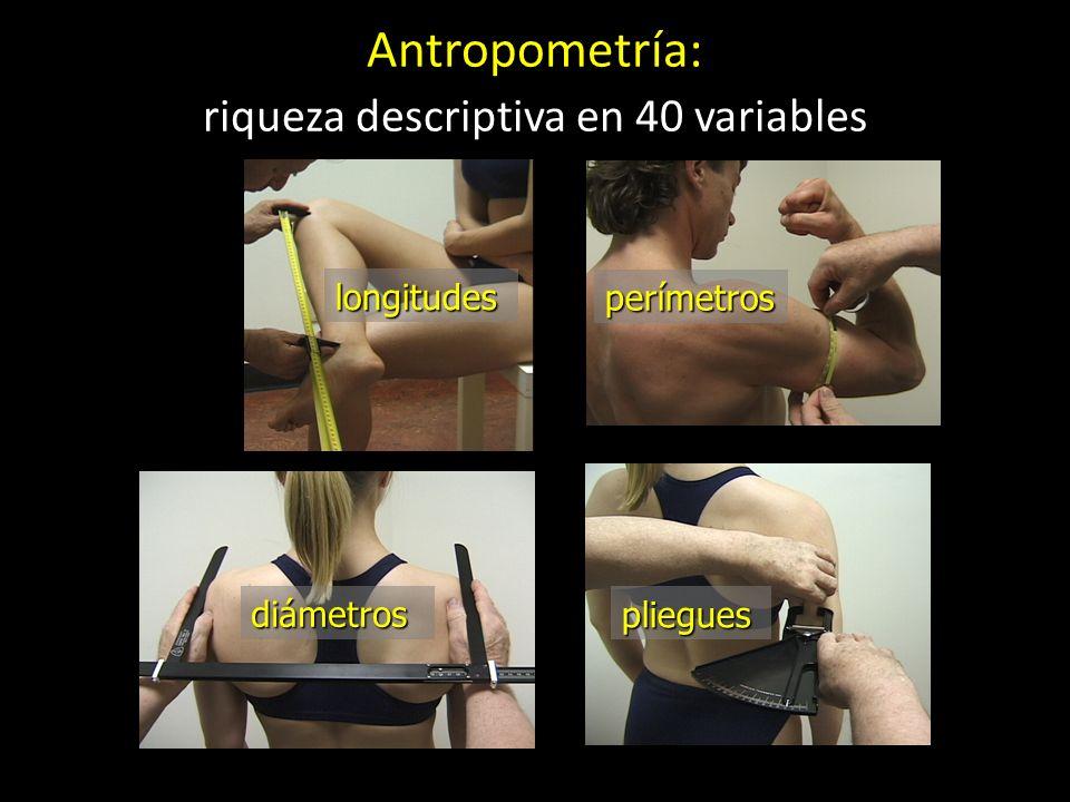 Antropometría: riqueza descriptiva en 40 variables