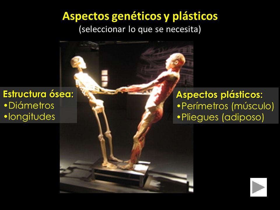 Aspectos genéticos y plásticos (seleccionar lo que se necesita)