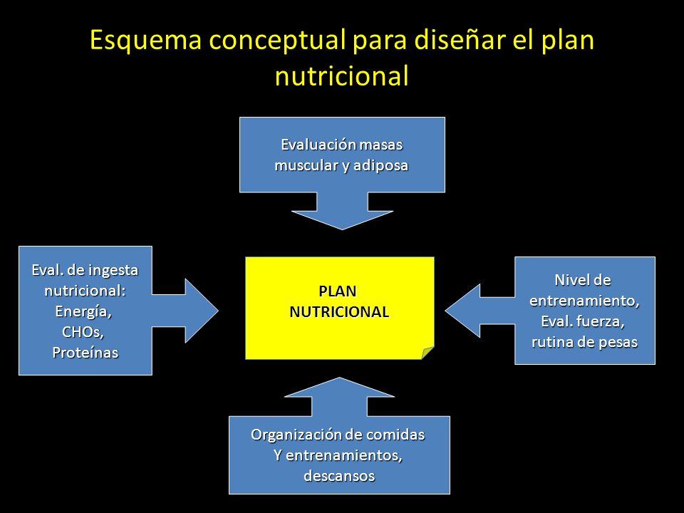 Esquema conceptual para diseñar el plan nutricional
