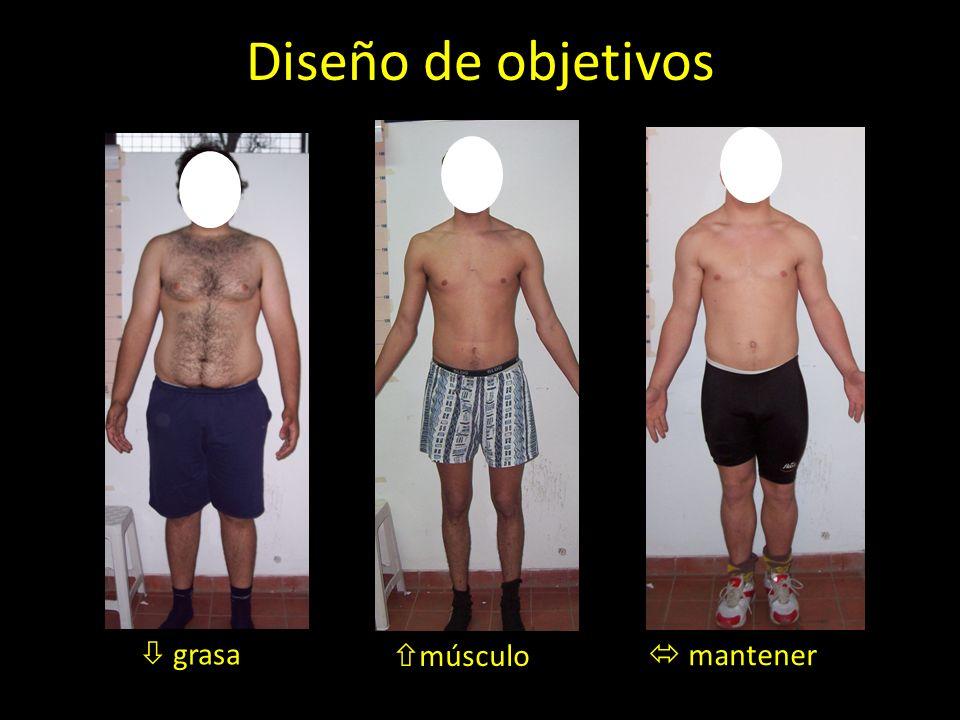 Diseño de objetivos músculo  mantener  grasa