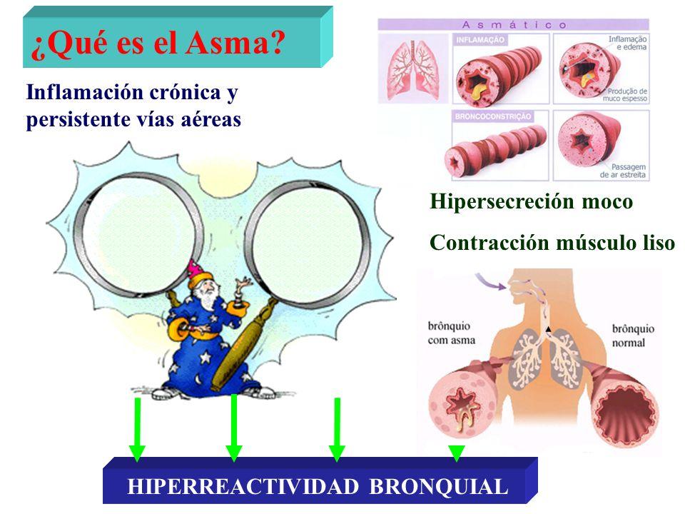 ¿Qué es el Asma Inflamación crónica y persistente vías aéreas