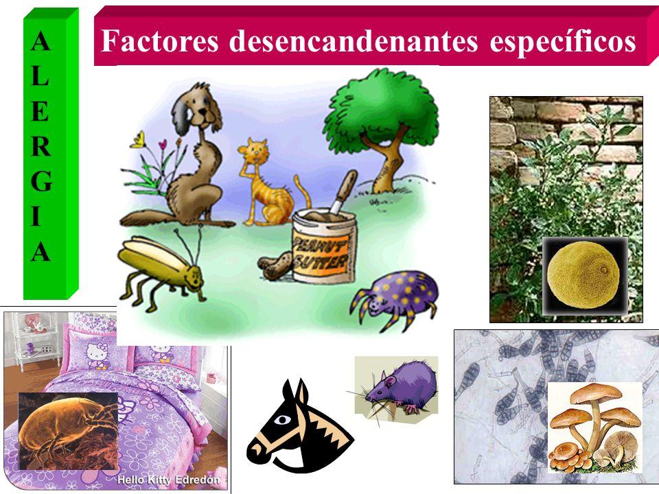 Factores desencandenantes específicos