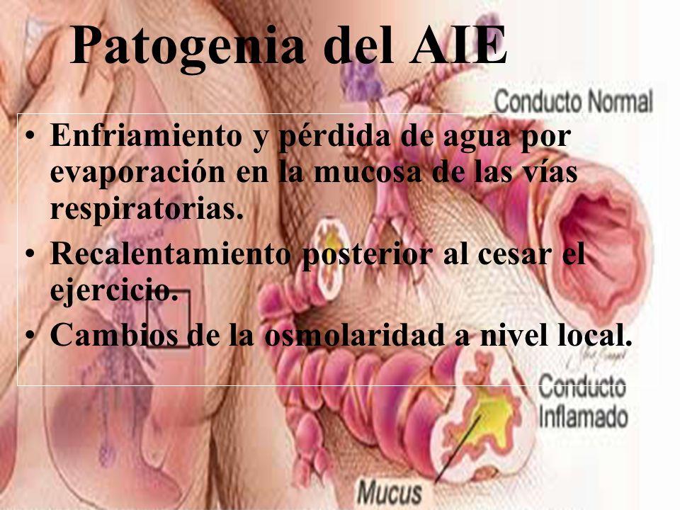Patogenia del AIE Enfriamiento y pérdida de agua por evaporación en la mucosa de las vías respiratorias.