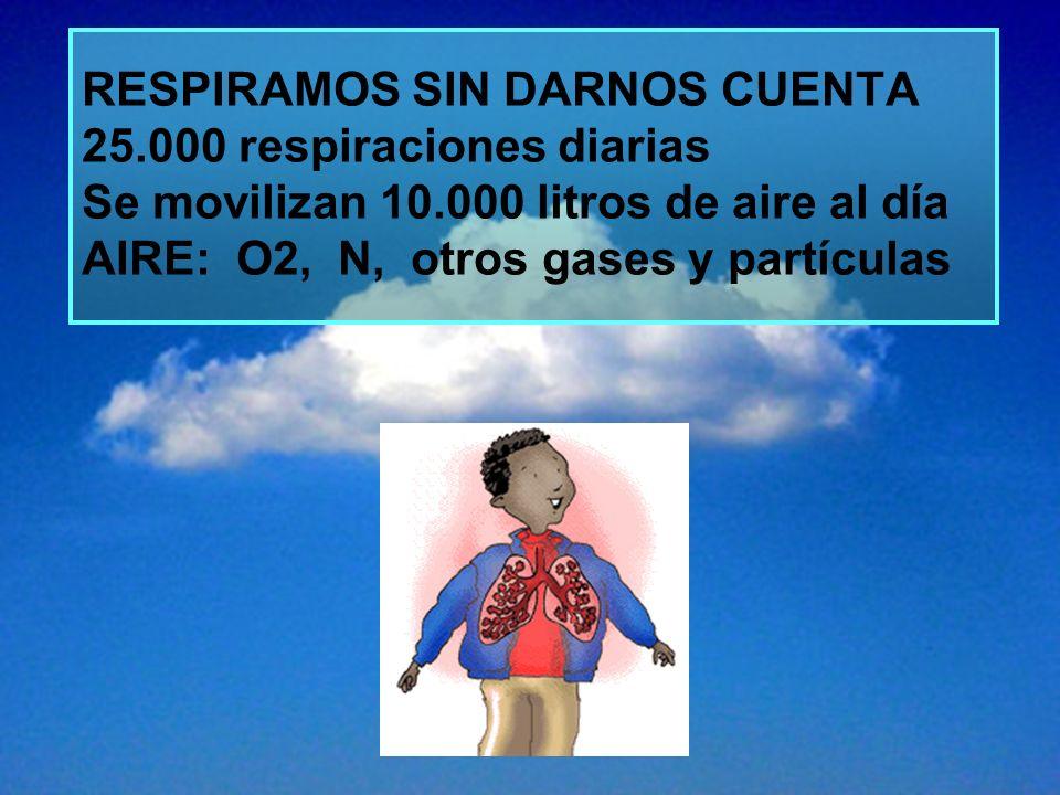 RESPIRAMOS SIN DARNOS CUENTA 25