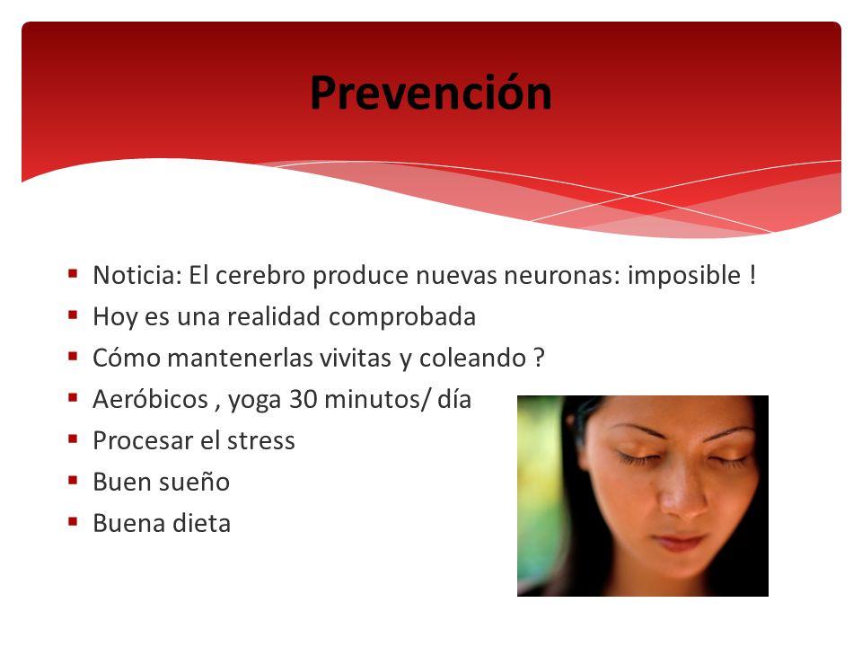 Prevención Noticia: El cerebro produce nuevas neuronas: imposible !