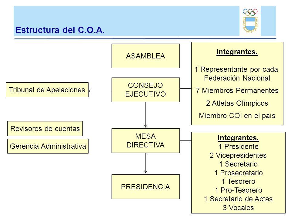 Estructura del C.O.A. Integrantes. ASAMBLEA 1 Representante por cada