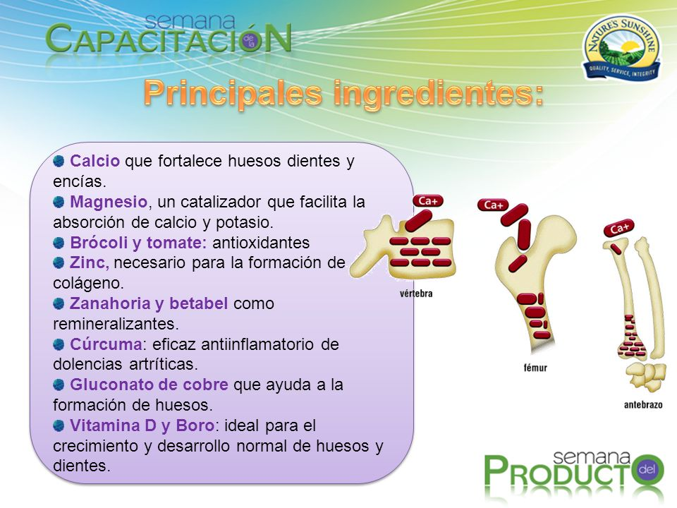 Principales ingredientes: